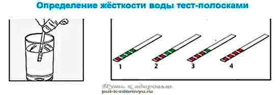 Определение жёсткости воды тест-полосками