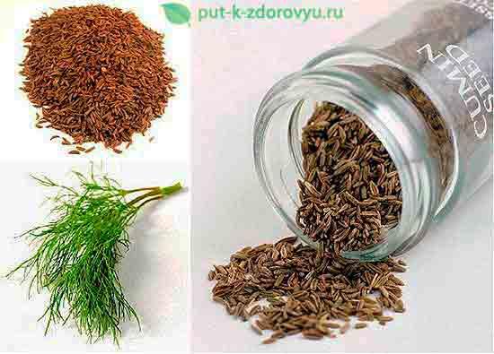 Как правильно собирать семена тмина?