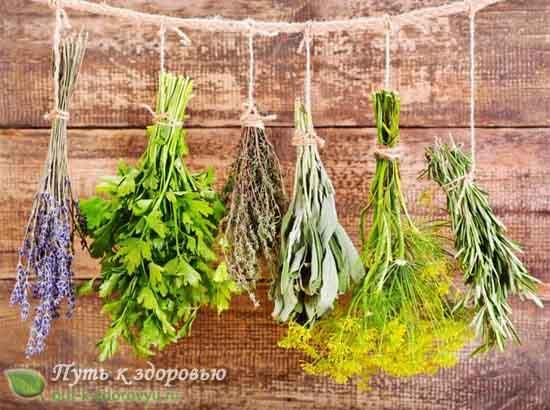 Как заготовить и хранить ароматические травы?