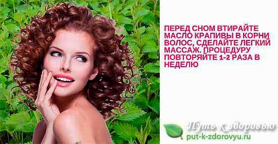 Крапивное масло для укрепления волос