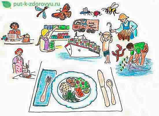 Узнайте больше о еде.
