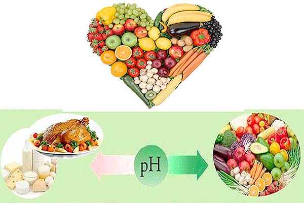 Аватар-Полезные и вредные продукты. Системы питания В.Караваева и Б.Болотова.