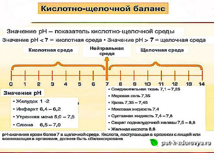 Кислотно-щелочной баланс (pH баланс) организма