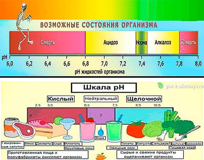 pH жидкостей организма и продуктов