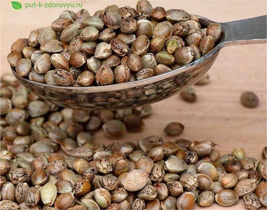 Полезные семена конопли.