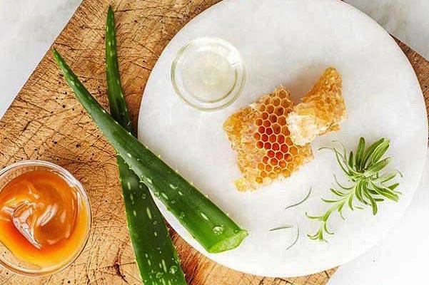 рецепт из алоэ с медом и лимоном для иммунитета