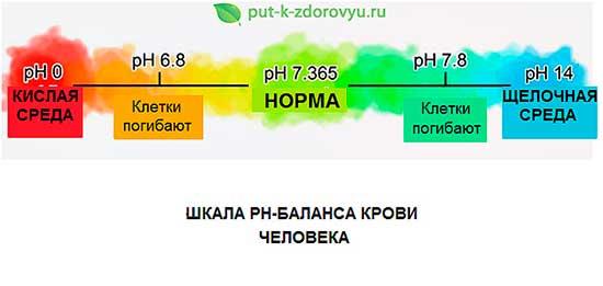 Shkala_pH_balansa_krovi_cheloveka