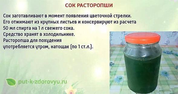 Как заготовить сок расторопши?