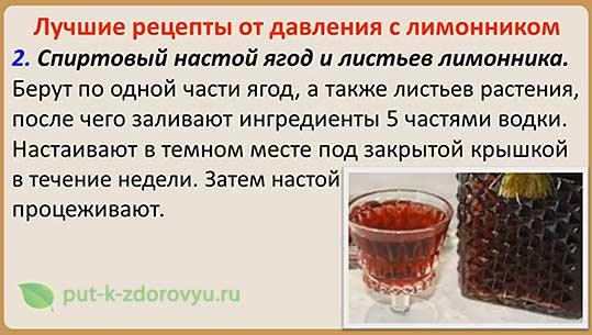 Спиртовой настой из ягод и листьев лимонника.