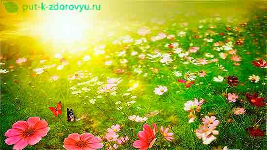 Как влияет Солнце на здоровье?