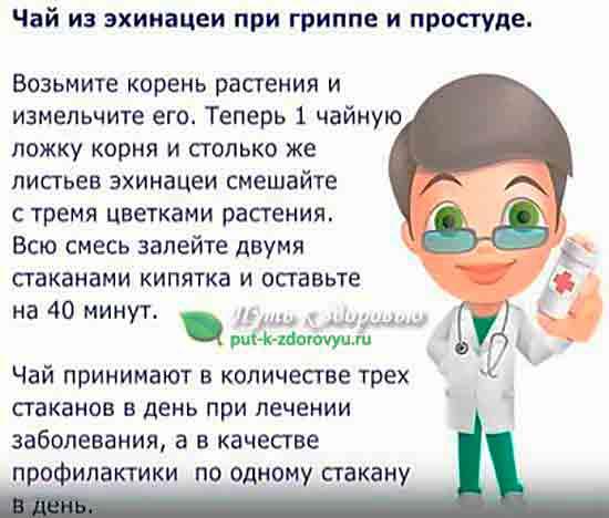 Чай для лечения и профилактики гриппа и простуды.