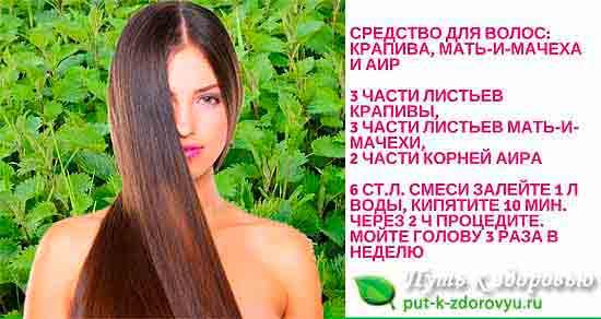 Сбор трав для стимуляции роста волос