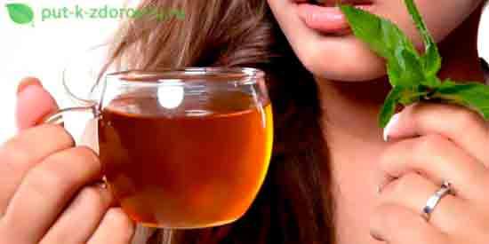 Лечебные свойства мяты перечной для женщин.