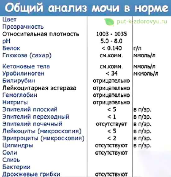 Norma_obschego_analiza_mochi
