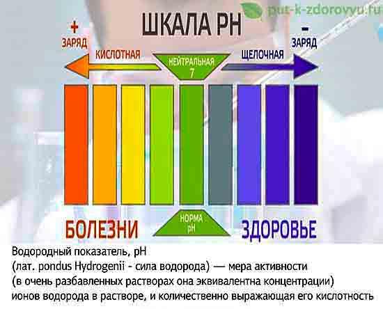 Шкала pH.