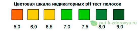 Цветовая шкала индикаторных pH тест-полосок.