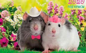 Аватар-Восточный гороскоп на 2020 год – год Крысы.