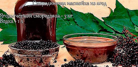 Лечебная смородиновая настойка из ягод