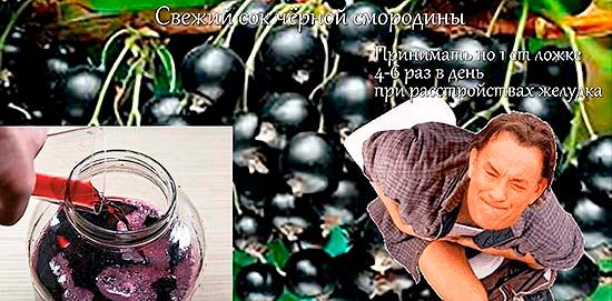 Свежий сок черной смородины при расстройствах желудка