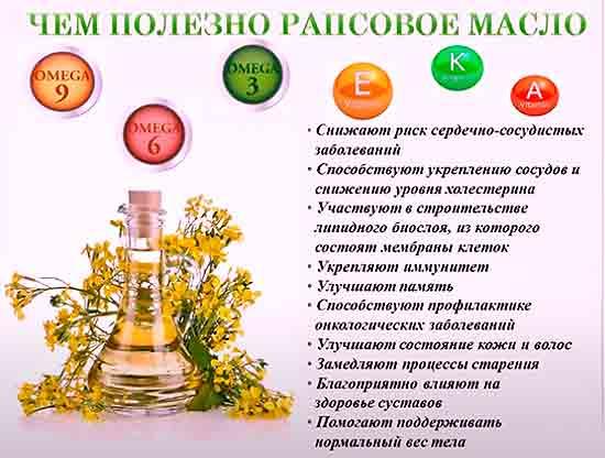 Chem_polezno_rapsovoe_maslo
