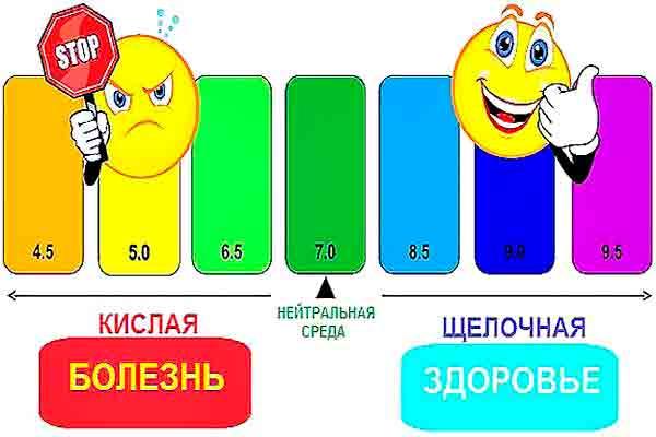 Avatar_Kislotno_schelochnoy_balans_organizma_pH_balans-ili_kislotno_schelochnoe_ravnovesie_KSCHR