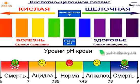 Kislotno_schelochnoy_balans_organizma