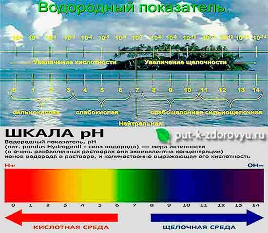 Shkala_pH