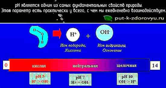 Vodorodnyiy_pokazatel_pH